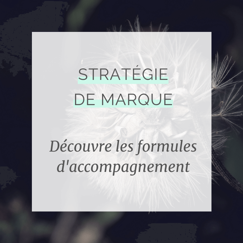 Découvre les formules d'accompagnement à la stratégie de marque